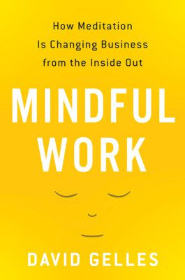 """""""Mindful Work"""" the book by David Gelles"""