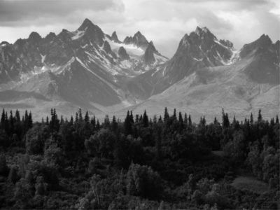 Black and white landscape of mountains and trees