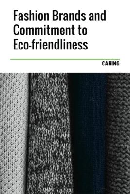 What fashion brands are ahead of the game for eco-friendly fashion?