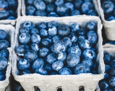 grow-your-own-berries