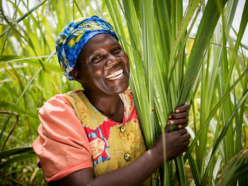 Women smiling while holding plant