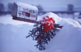 Mailbox and Wreath Covered in Snow