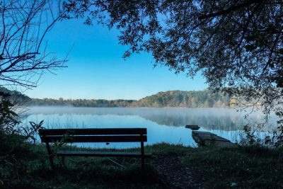 bench in front of pond during daytime